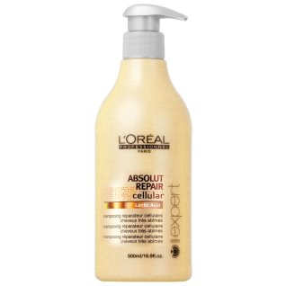 loreal-professional-series-expert-absolut-16